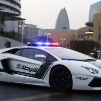 19489 Дубайская полиция написала водителю комментарий о штрафе в Instagram