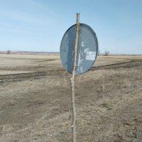 20715 Самарские сучки помогают держать дорожные знаки