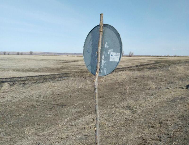 Самарские сучки помогают держать дорожные знаки
