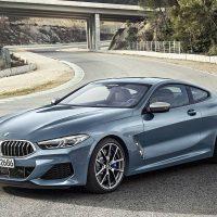21209 Обзор автомобиля BMW 8 Series Coupe 2018 - 2019