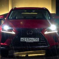 Стороны трапеции. Lexus NX 200/300