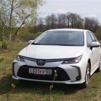 23155 Сдать экзамены экстерном. Toyota Corolla Sedan