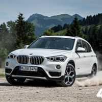 31089 Мелкий бес. BMW X1 (F48)
