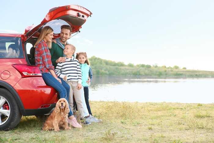 В Госдуме предложили выдавать машины многодетным семьям